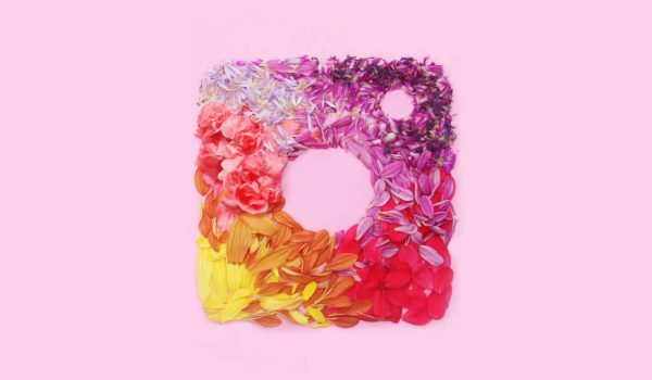 Instagram logo created with flower pedals on a pink background