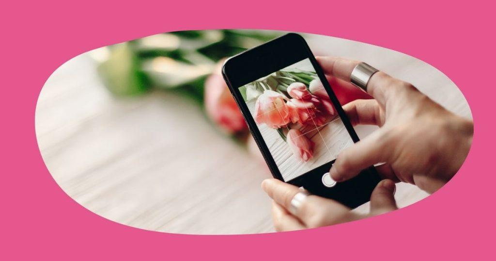 Hand holding phone taking photo of roses